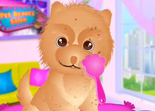 Pet Beauty Salon iPad