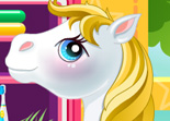 B�b� Poney Salon