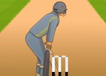 Cricket Power T20