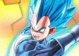 Dragon Ball Z Etoiles Cach�es 2015